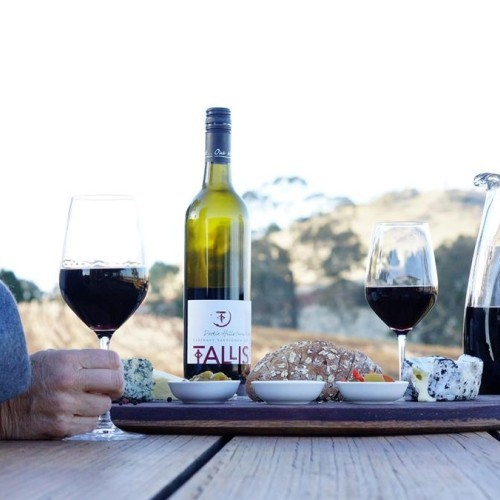 Tallis Wine - Live Music in May