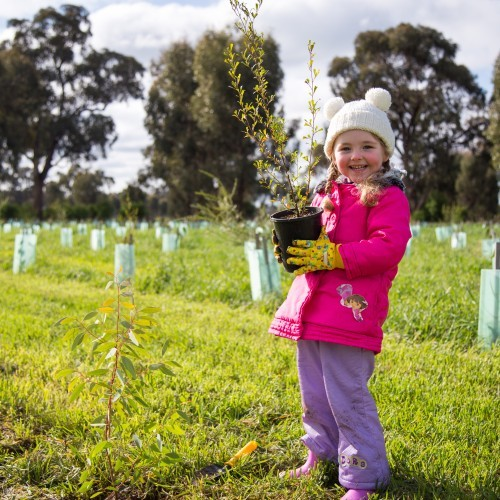 One Tree Per Child - Community Planting Activity (Shepparton)