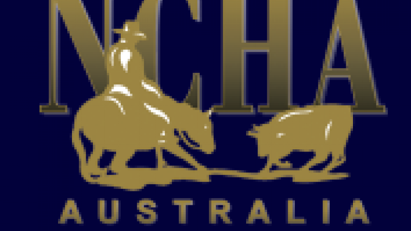 2017 National Cutting Horse Victorian Futurity