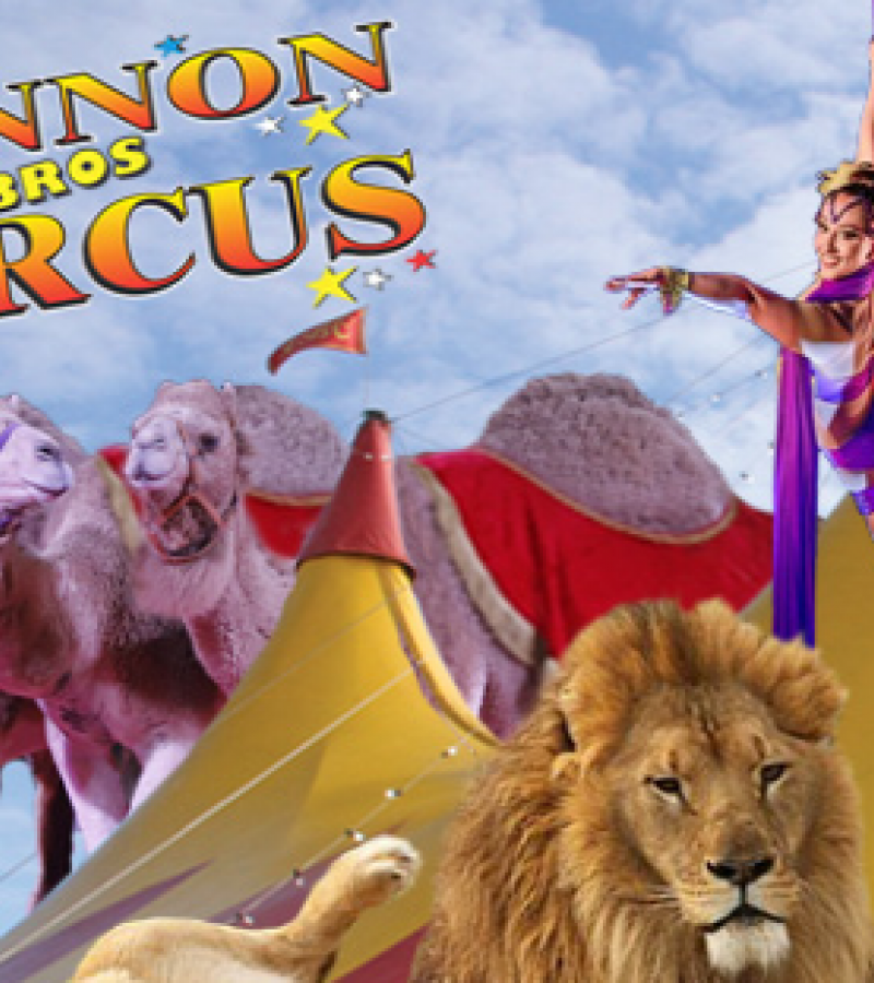 Lennon Brothers Circus