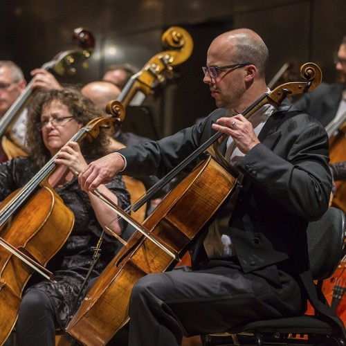 Riverlinks and Melbourne Symphony Orchestra present An Evening with the MSO