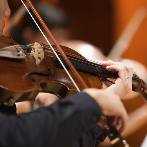 Riverlinks and Melbourne Chamber Orchestra present Bach Concertos