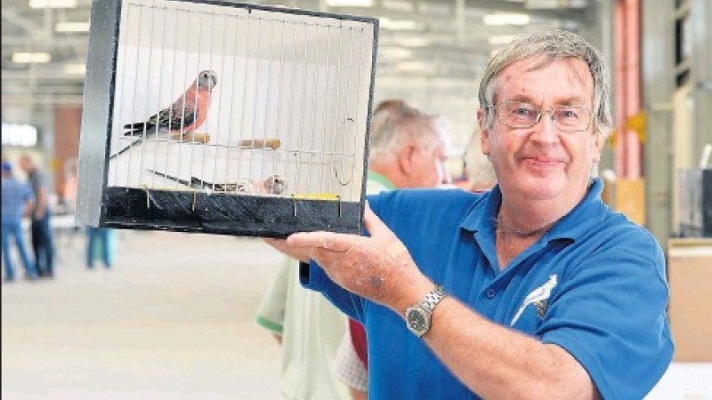 Shepparton Bird Expo & Sale