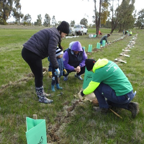 National Tree Day / One Tree Per Child Planting Day