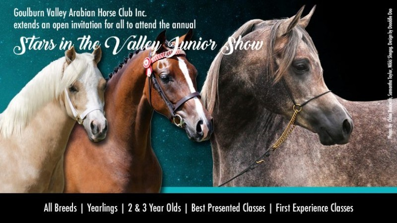 Stars in the Valley Junior Show 2019