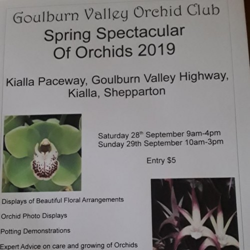 Spring Spectacular of Orchids 2019
