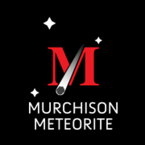 50th Anniversary of the Murchison Meteorite