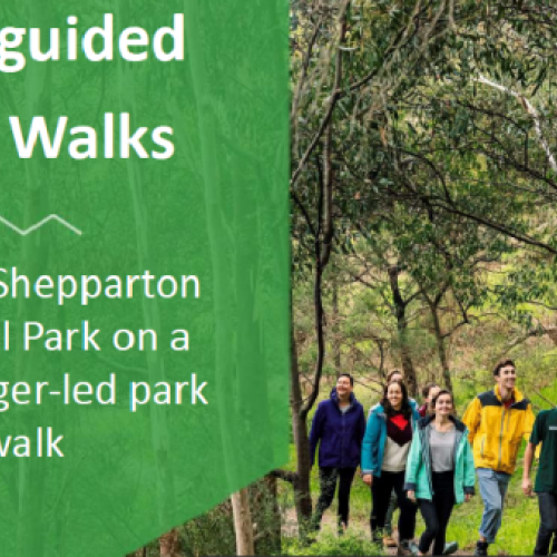 Free guided Parks Victoria Walk