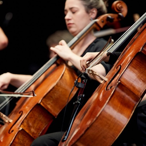 Riverlinks and Melbourne Symphony Orchestra present An Evening with the MSO - Shepparton