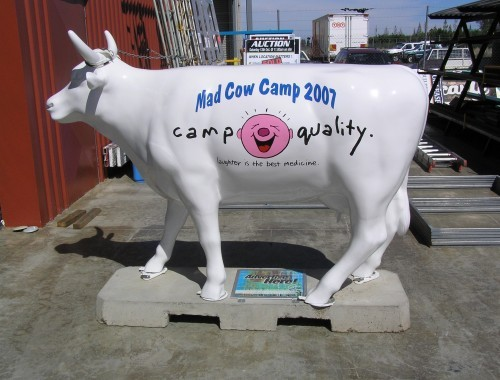 Mad Cow Camp 2007 2