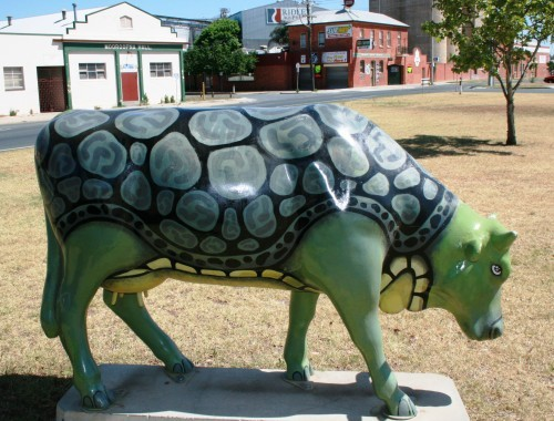 Turtle Cow